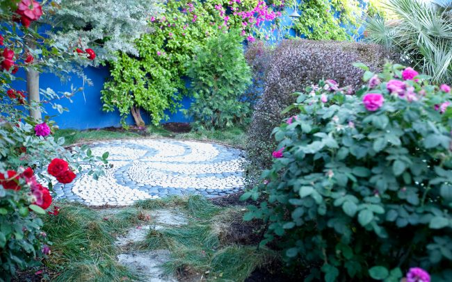 Meditation circle with roses