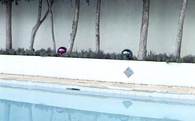 Mirrored balls and Senecio mandraliscae