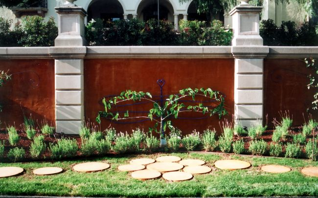 Insect-shaped trellis with espaliered fruit tree