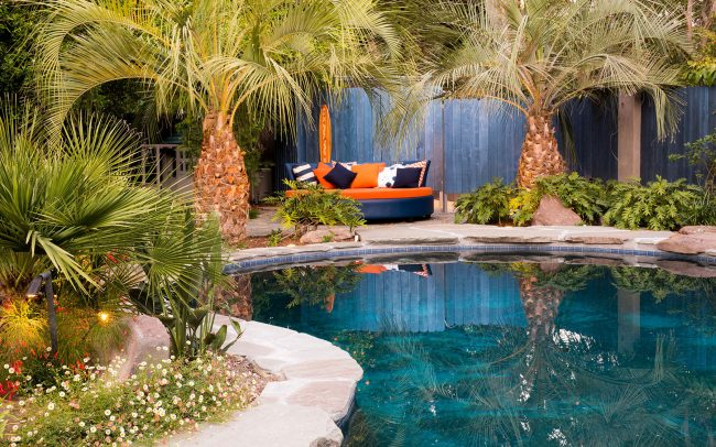 Pool and lounger