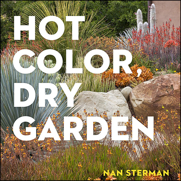 Hot Color, Dry Garden by Nan Sterman - Chapter Press Clipping