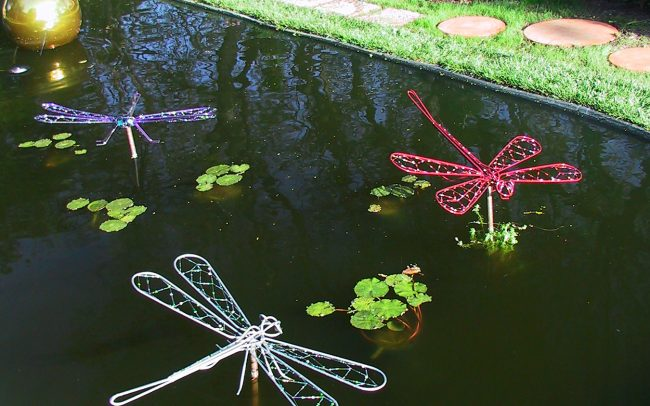 Reflecting pond with jeweled dragonflies