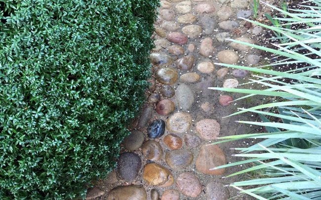 Rounded cobbles among textured plantings